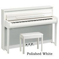 CLP685 Polished White