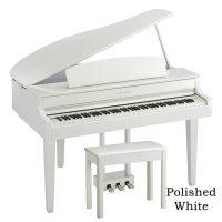 CLP665gp Polished White