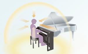 CLP 785 Grand Acoustic Imaging