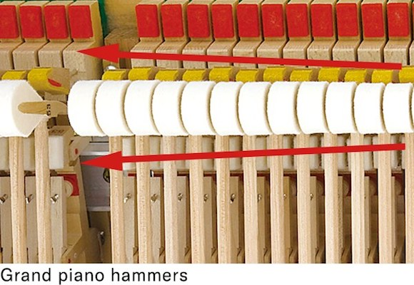 CLP 785 Hammers